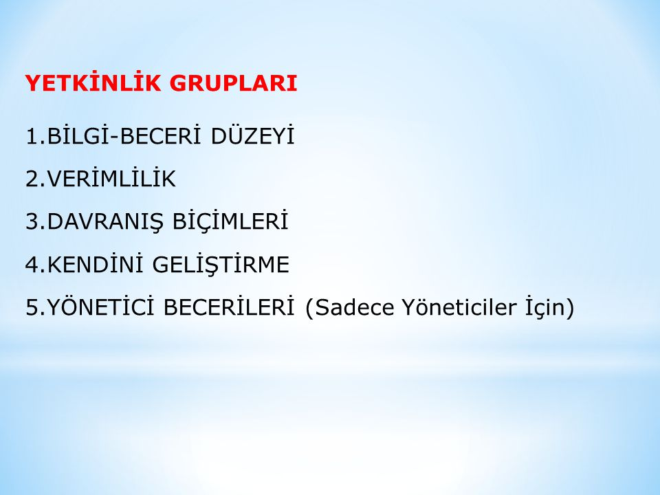 YETKİNLİK GRUPLARI BİLGİ-BECERİ DÜZEYİ. VERİMLİLİK.