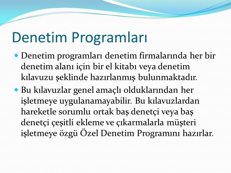 Denetim Programları