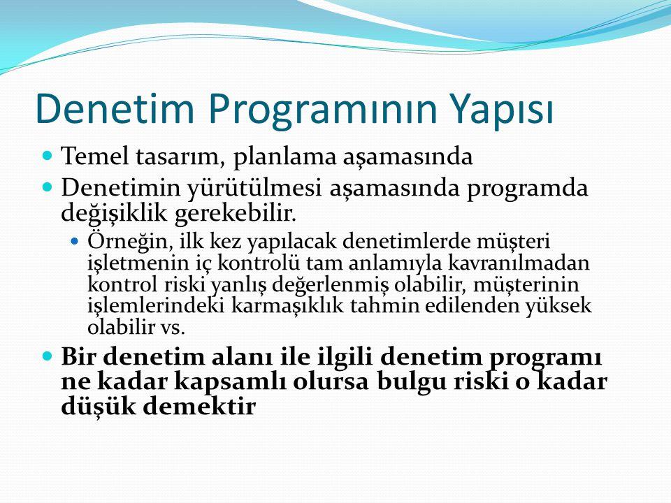 Denetim Programının Yapısı