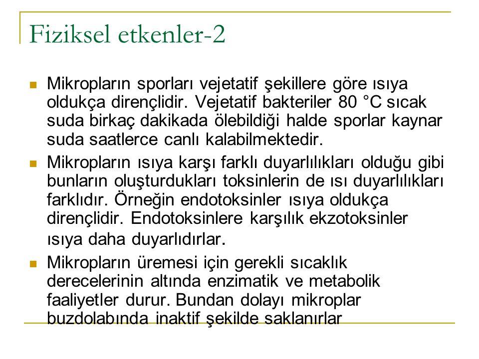 Fiziksel etkenler-2