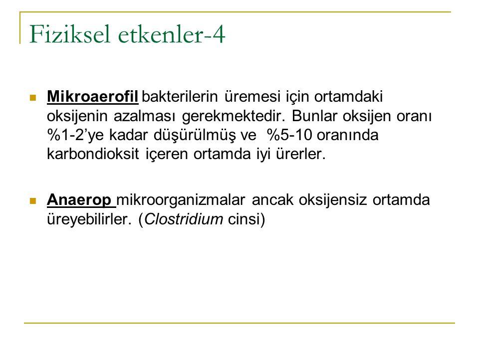 Fiziksel etkenler-4