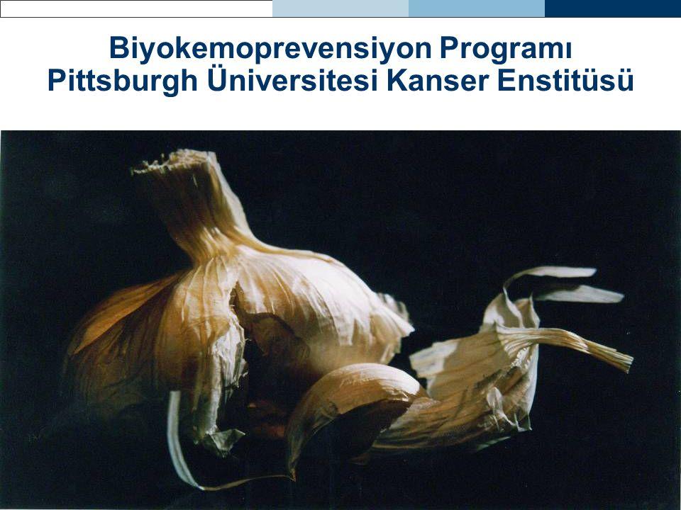 Biyokemoprevensiyon Programı Pittsburgh Üniversitesi Kanser Enstitüsü