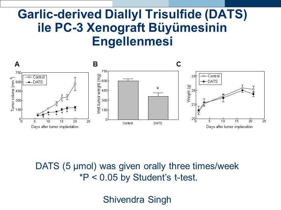 Garlic-derived Diallyl Trisulfide (DATS) ile PC-3 Xenograft Büyümesinin Engellenmesi