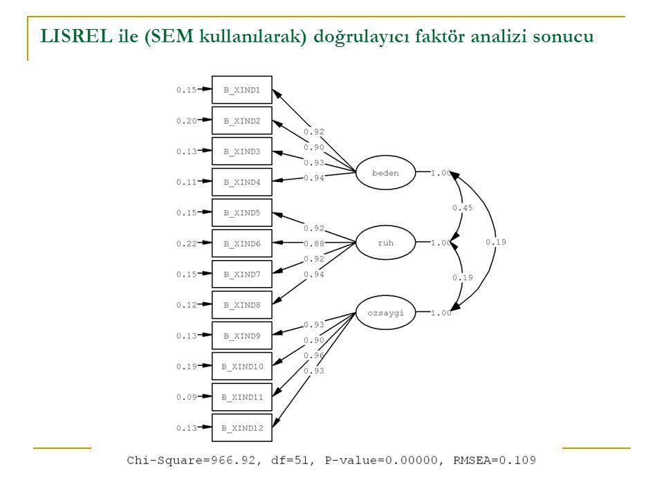 LISREL ile (SEM kullanılarak) doğrulayıcı faktör analizi sonucu
