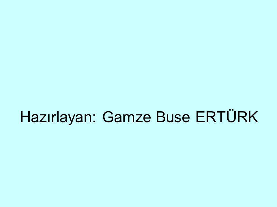 Hazırlayan: Gamze Buse ERTÜRK