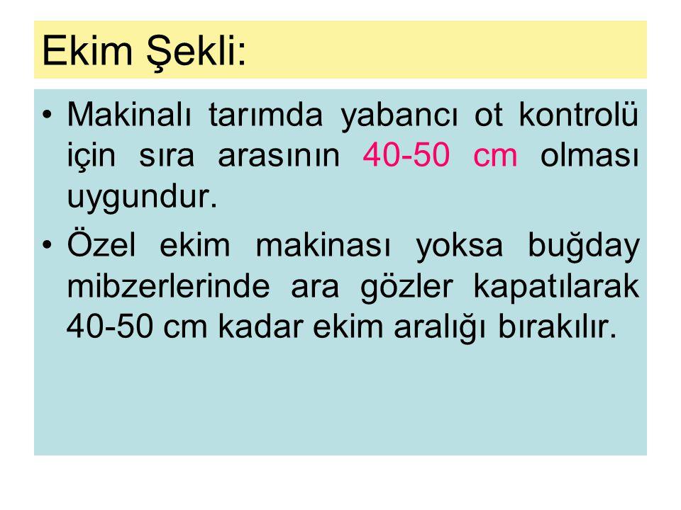 Ekim Şekli: Makinalı tarımda yabancı ot kontrolü için sıra arasının 40-50 cm olması uygundur.