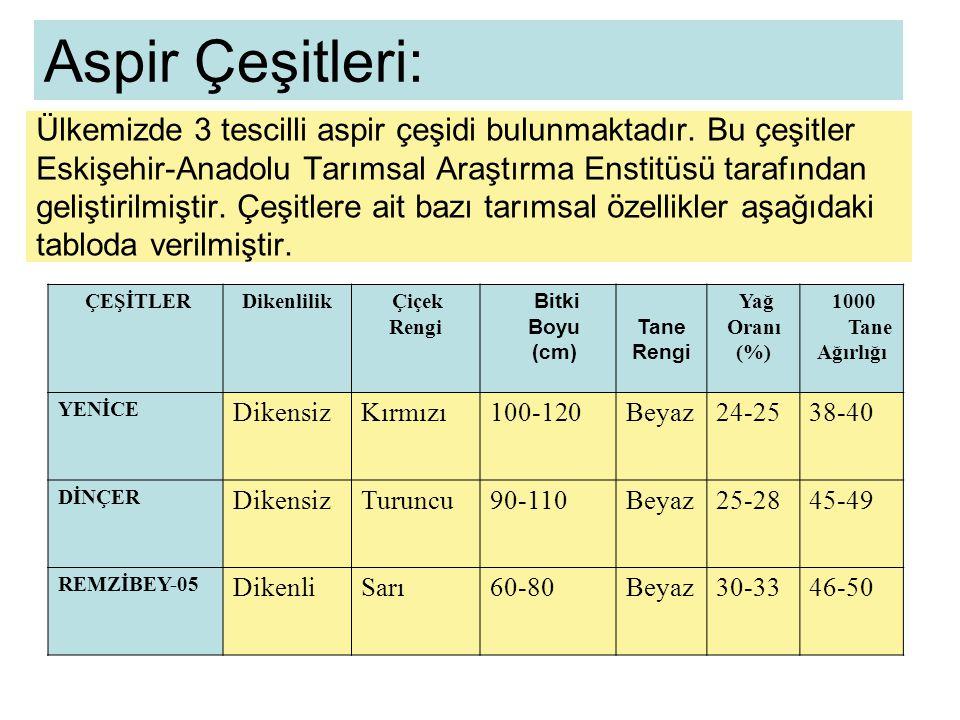 Aspir Çeşitleri:
