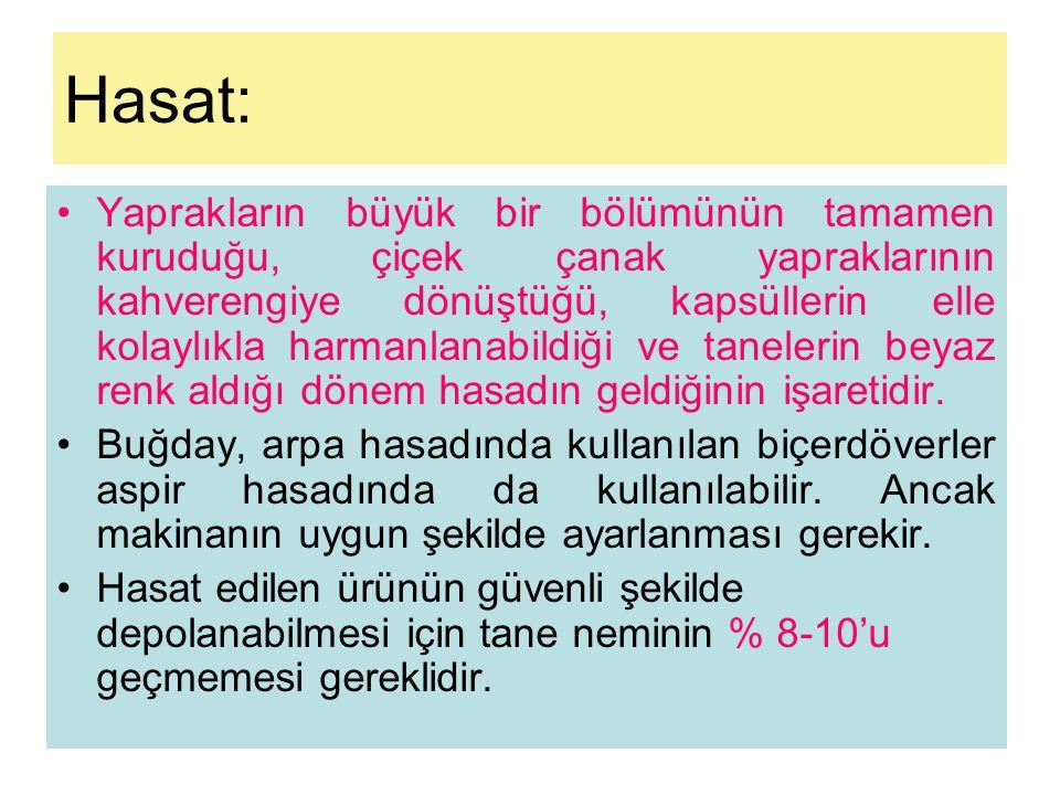 Hasat: