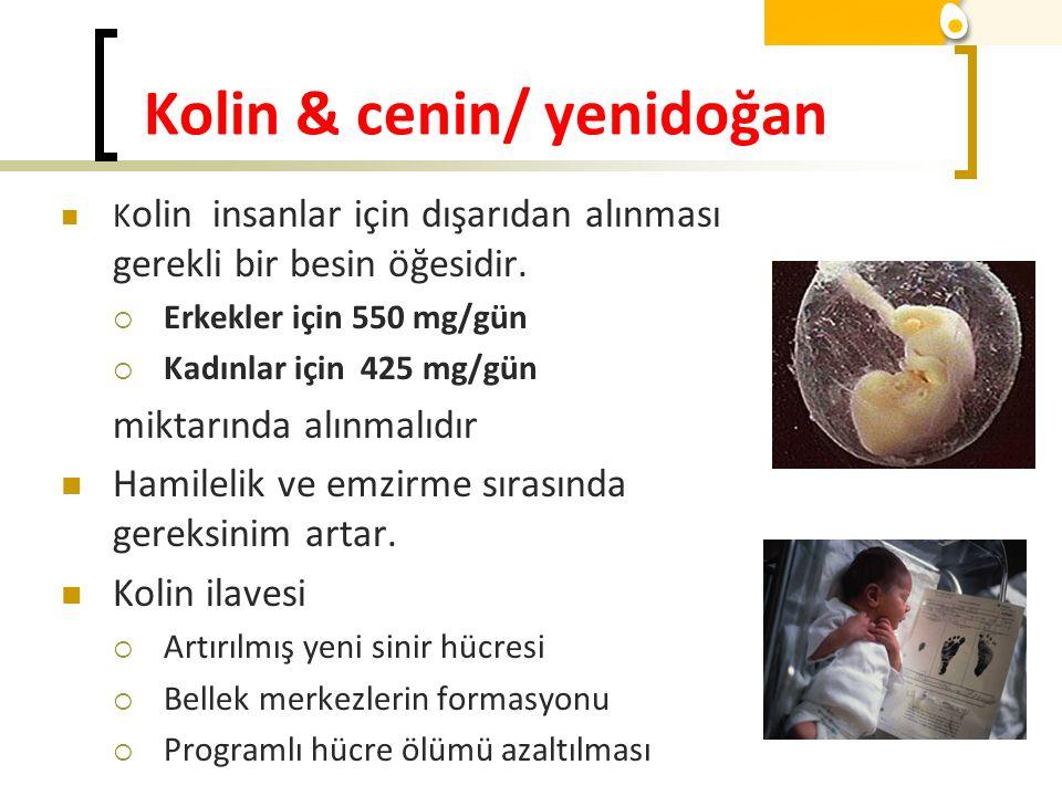 Kolin & cenin/ yenidoğan