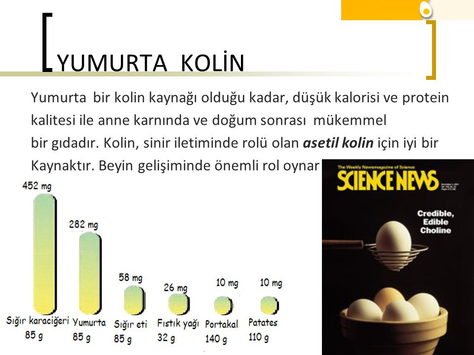 YUMURTA KOLİN Yumurta bir kolin kaynağı olduğu kadar, düşük kalorisi ve protein. kalitesi ile anne karnında ve doğum sonrası mükemmel.