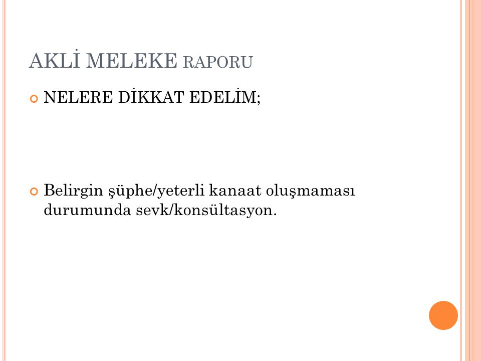 AKLİ MELEKE raporu NELERE DİKKAT EDELİM;