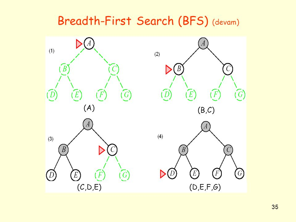 Breadth-First Search (BFS) (devam)