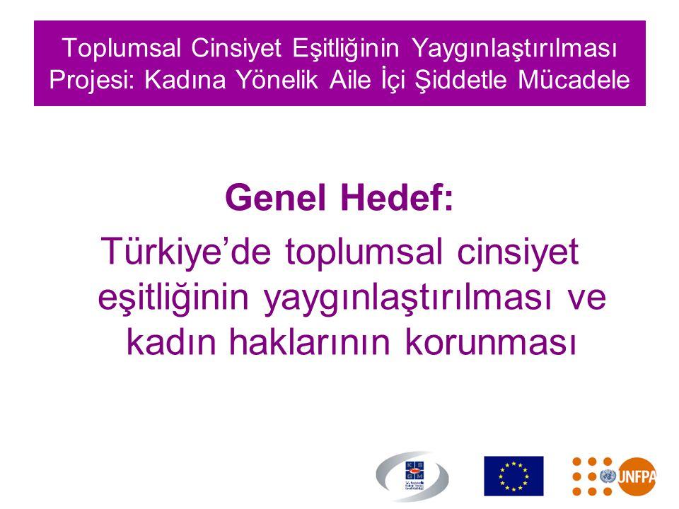 Toplumsal Cinsiyet Eşitliğinin Yaygınlaştırılması Projesi: Kadına Yönelik Aile İçi Şiddetle Mücadele