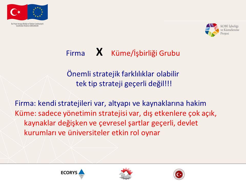 Firma X Küme/İşbirliği Grubu Önemli stratejik farklılıklar olabilir tek tip strateji geçerli değil!!.