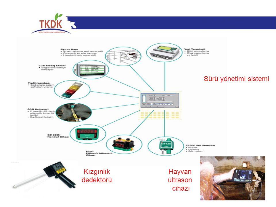Sürü yönetimi sistemi Kızgınlık dedektörü Hayvan ultrason cihazı