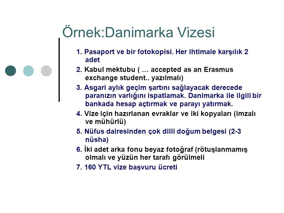 Örnek:Danimarka Vizesi