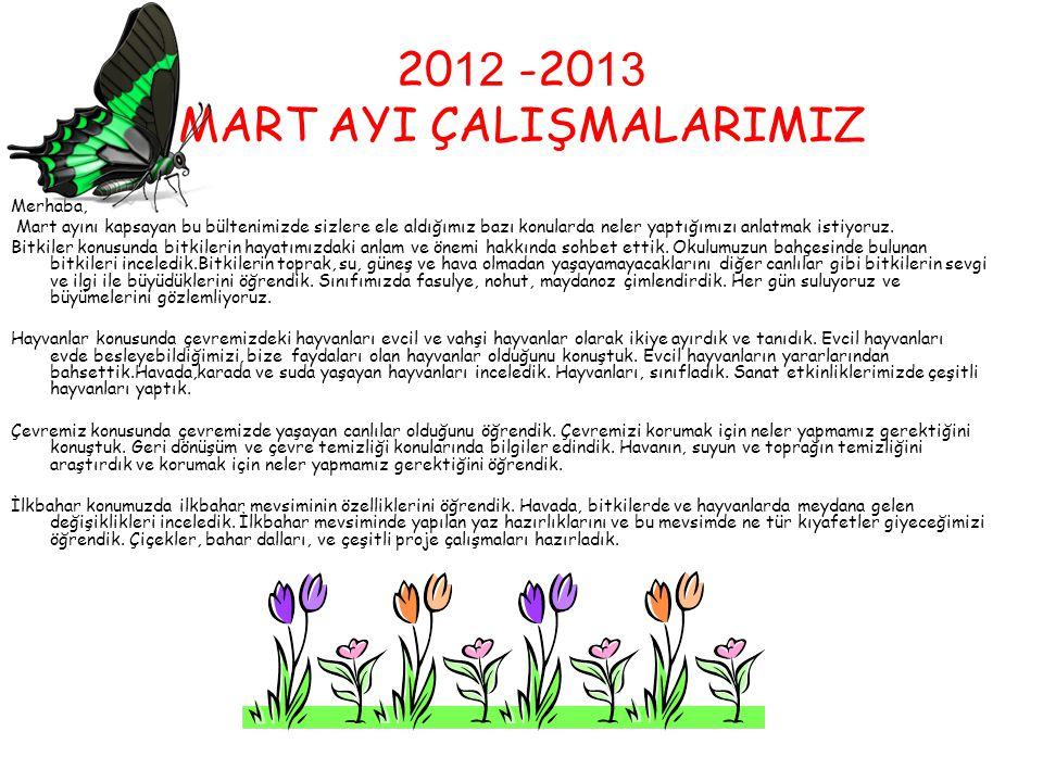 2012 -2013 MART AYI ÇALIŞMALARIMIZ