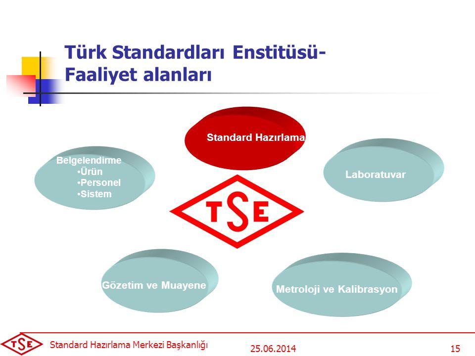Türk Standardları Enstitüsü- Faaliyet alanları