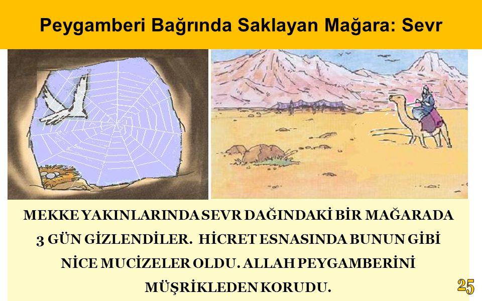 Peygamberi Bağrında Saklayan Mağara: Sevr