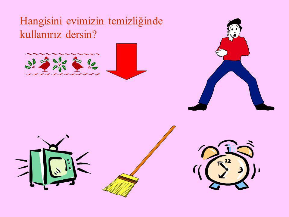 Hangisini evimizin temizliğinde kullanırız dersin