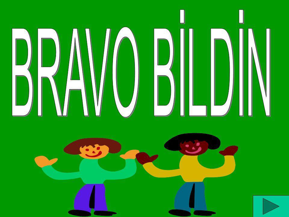 BRAVO BİLDİN