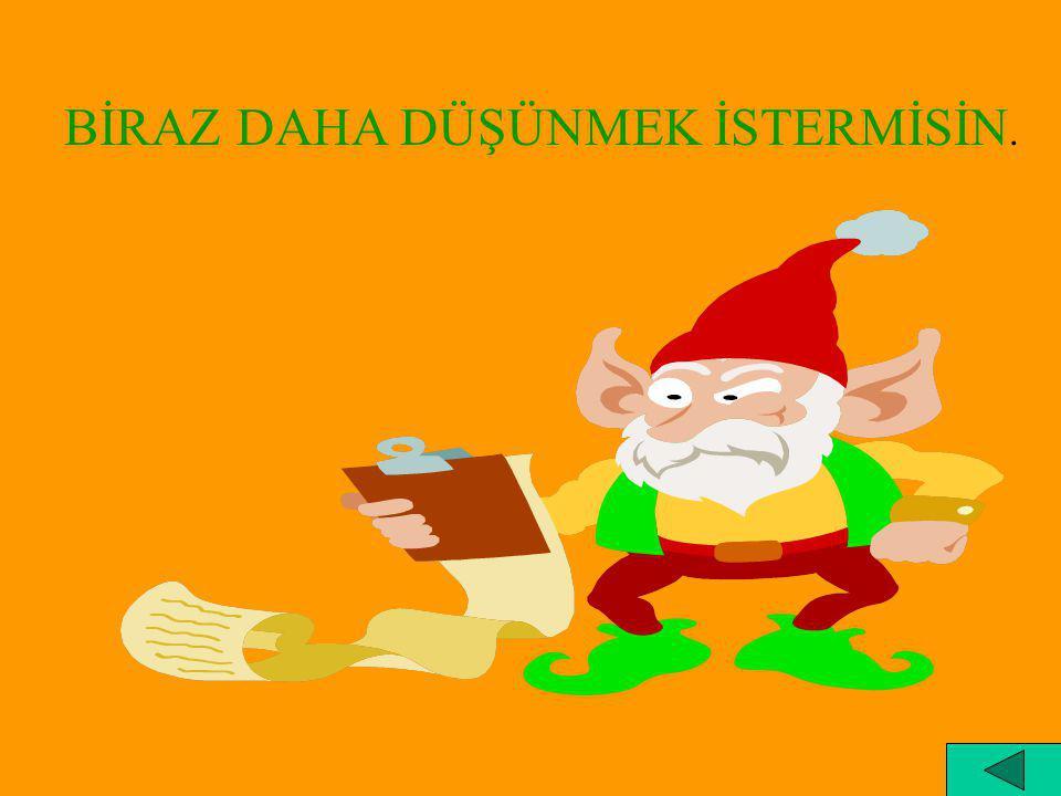 BİRAZ DAHA DÜŞÜNMEK İSTERMİSİN.