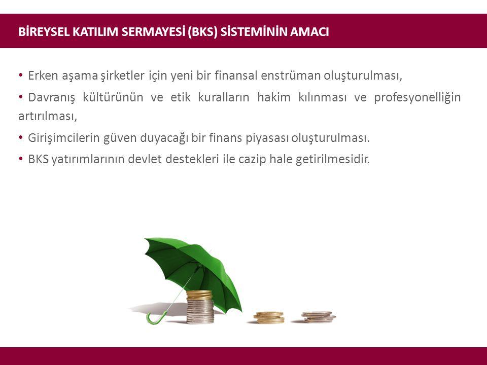 BİREYSEL KATILIM SERMAYESİ (BKS) SİSTEMİNİN AMACI