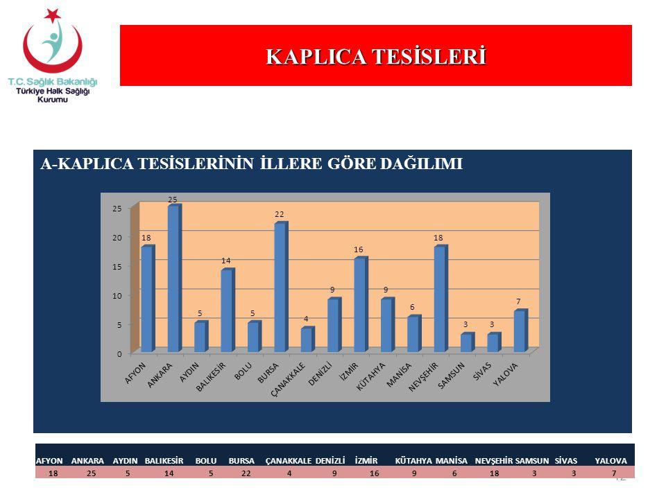 KAPLICA TESİSLERİ A-KAPLICA TESİSLERİNİN İLLERE GÖRE DAĞILIMI AFYON