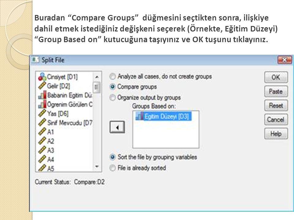 Buradan Compare Groups düğmesini seçtikten sonra, ilişkiye dahil etmek istediğiniz değişkeni seçerek (Örnekte, Eğitim Düzeyi) Group Based on kutucuğuna taşıyınız ve OK tuşunu tıklayınız.