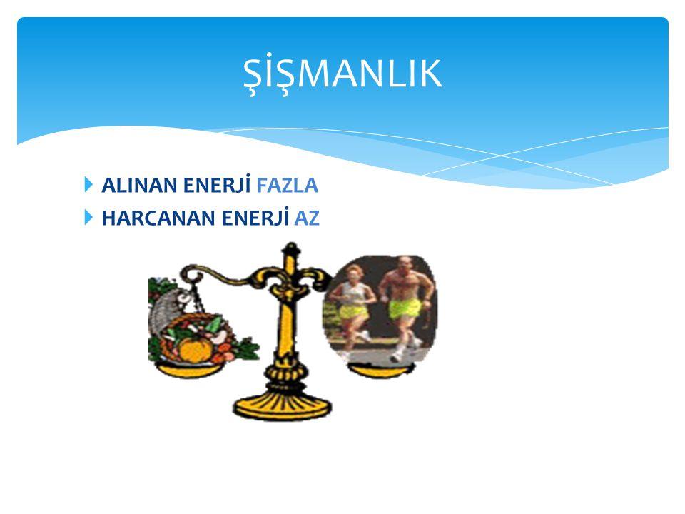 ŞİŞMANLIK ALINAN ENERJİ FAZLA HARCANAN ENERJİ AZ