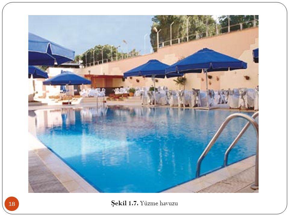 Şekil 1.7. Yüzme havuzu