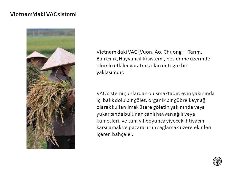 Vietnam'daki VAC sistemi
