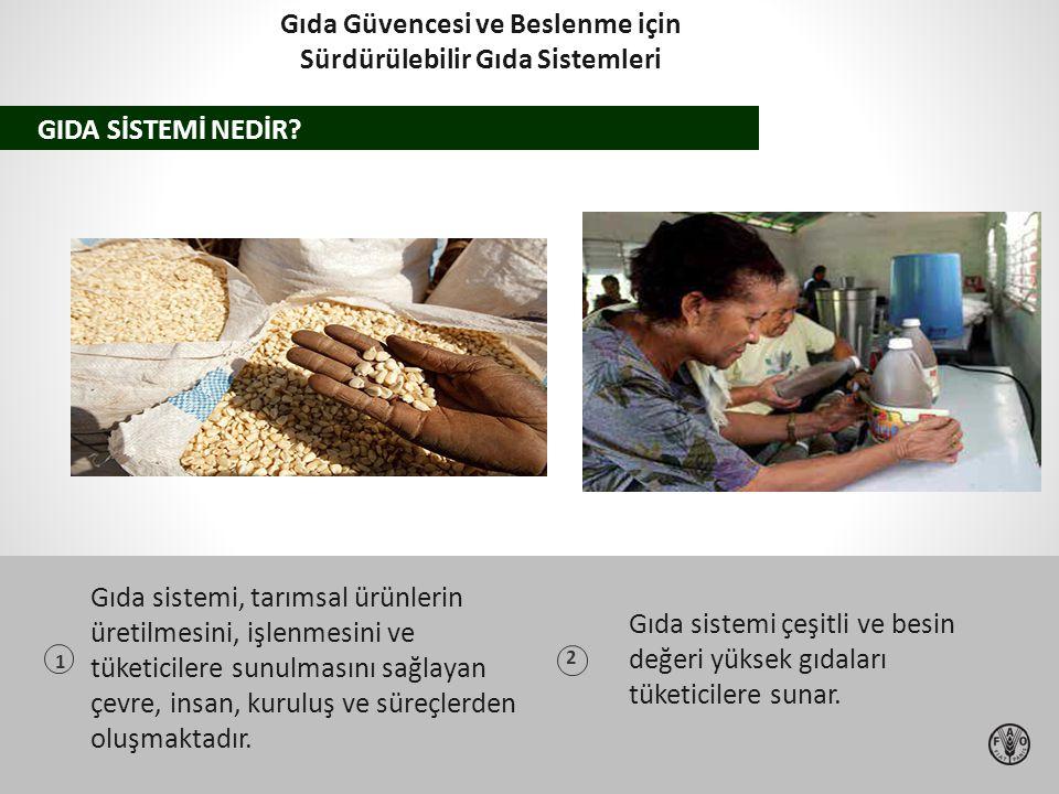 Gıda Güvencesi ve Beslenme için Sürdürülebilir Gıda Sistemleri
