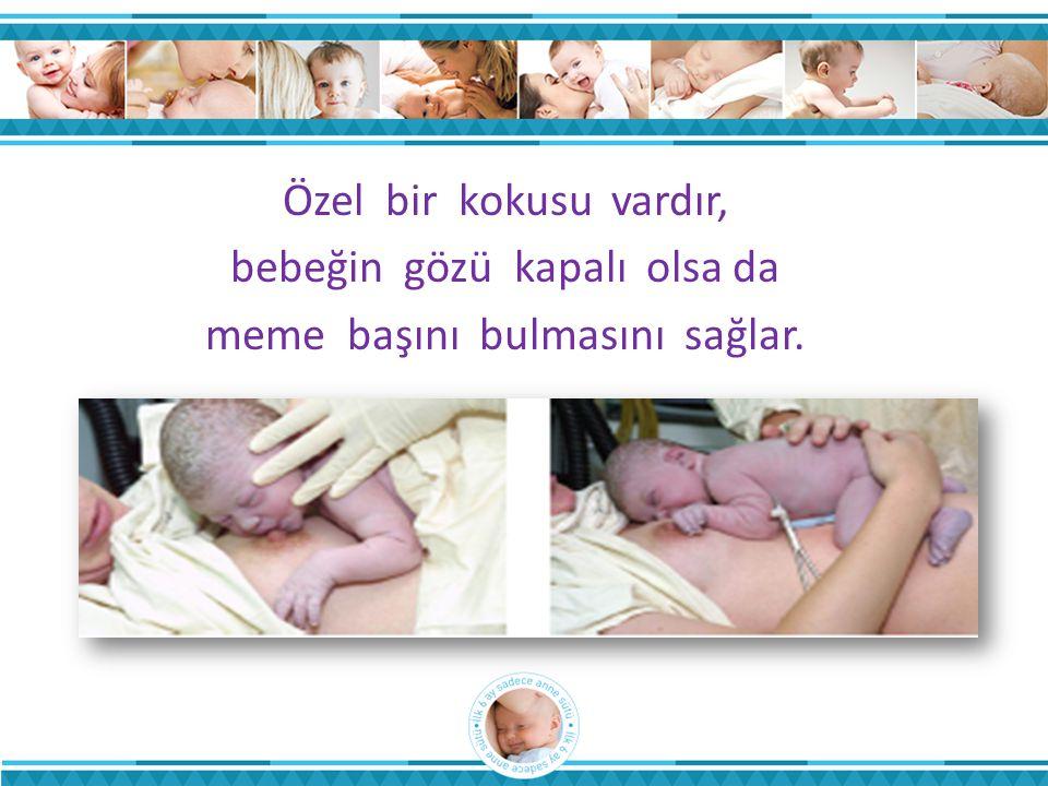bebeğin gözü kapalı olsa da meme başını bulmasını sağlar.