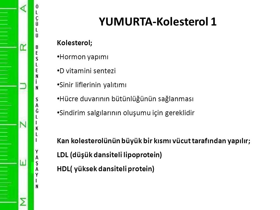 YUMURTA-Kolesterol 1 Kolesterol; Hormon yapımı D vitamini sentezi