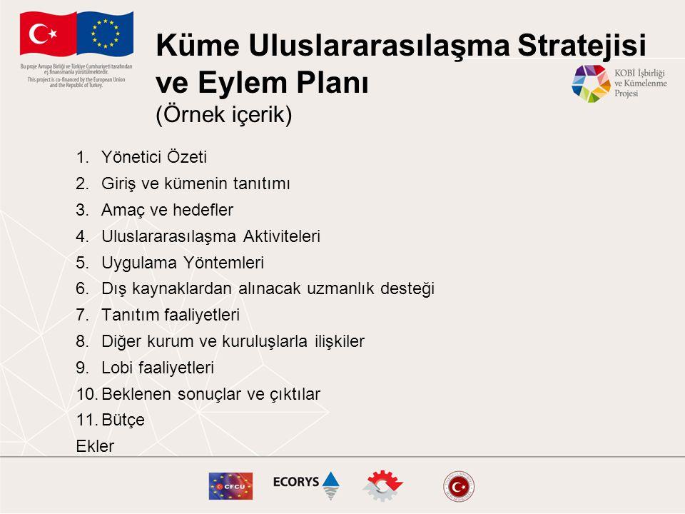 Küme Uluslararasılaşma Stratejisi ve Eylem Planı (Örnek içerik)