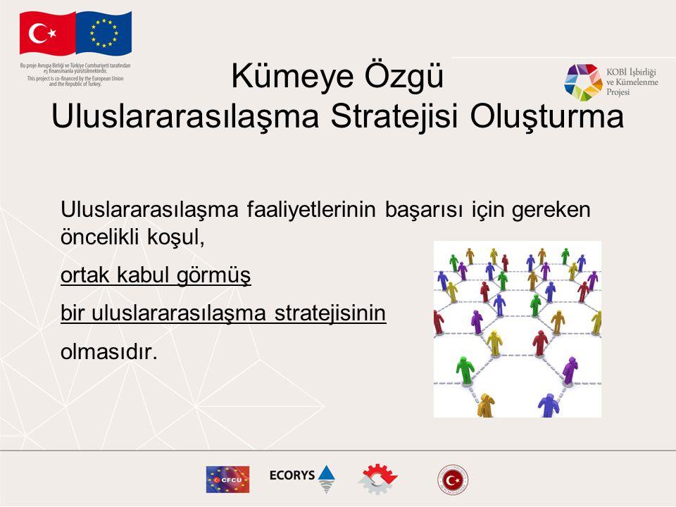 Kümeye Özgü Uluslararasılaşma Stratejisi Oluşturma