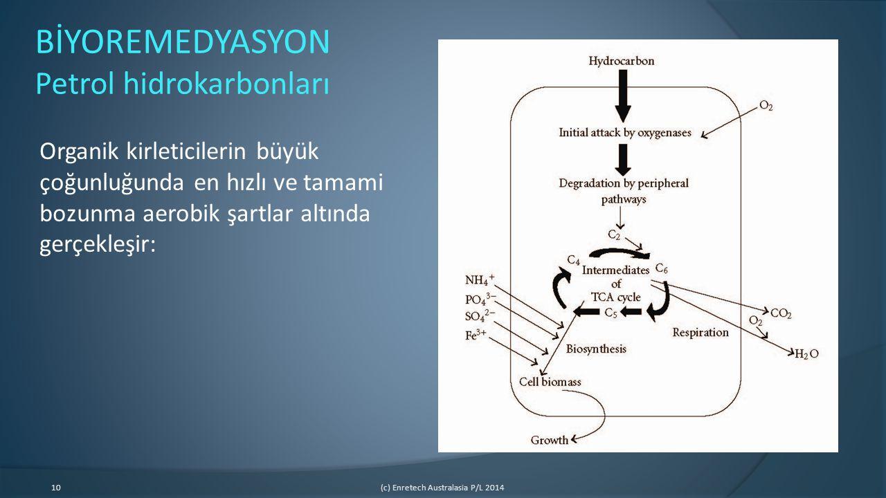 BİYOREMEDYASYON Petrol hidrokarbonları