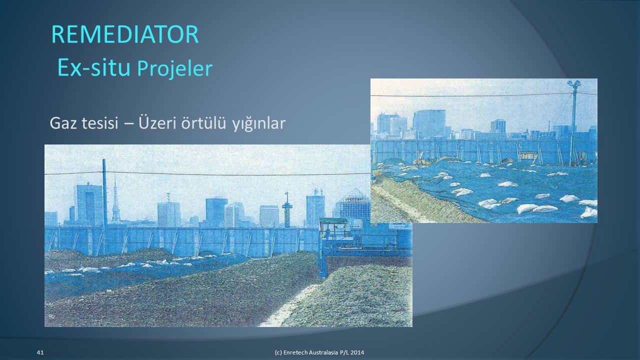 REMEDIATOR Ex-situ Projeler