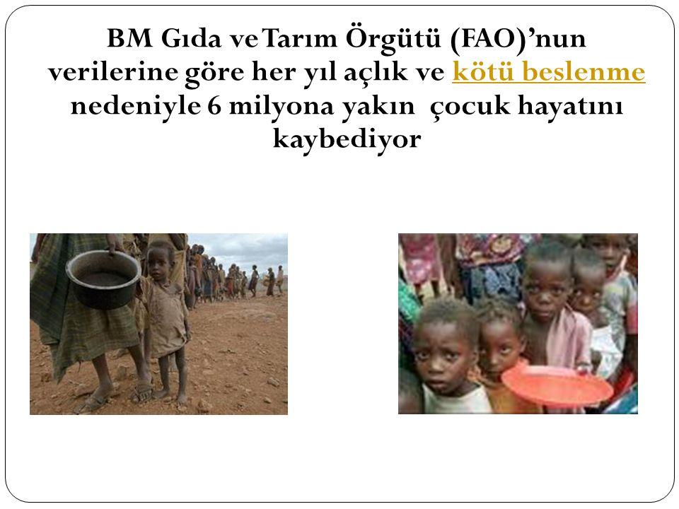 BM Gıda ve Tarım Örgütü (FAO)'nun verilerine göre her yıl açlık ve kötü beslenme nedeniyle 6 milyona yakın çocuk hayatını kaybediyor