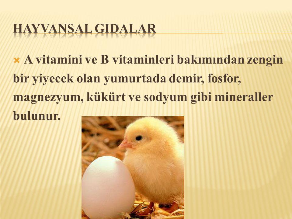 Hayvansal GIdalar A vitamini ve B vitaminleri bakımından zengin. bir yiyecek olan yumurtada demir, fosfor,