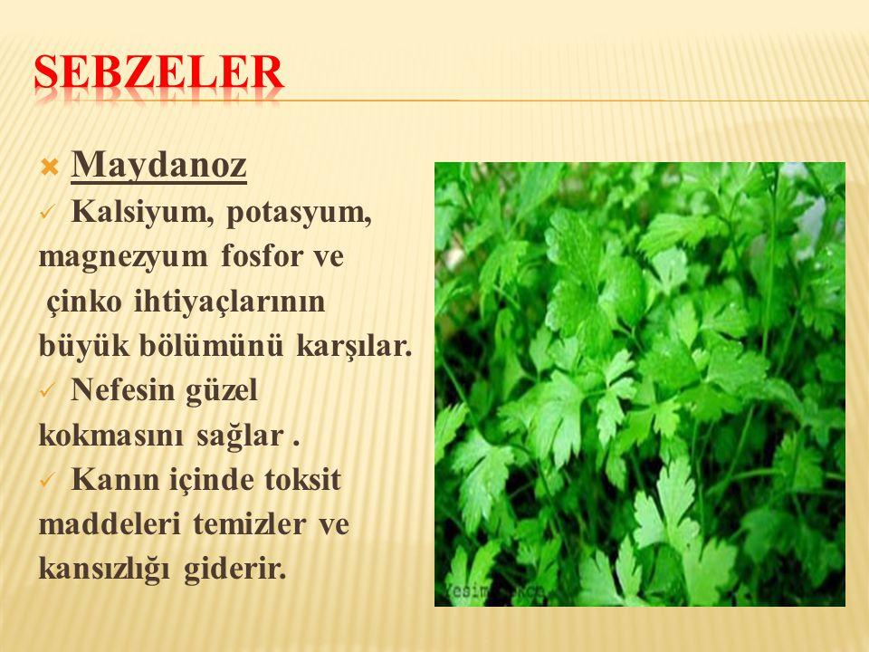 Sebzeler Maydanoz Kalsiyum, potasyum, magnezyum fosfor ve