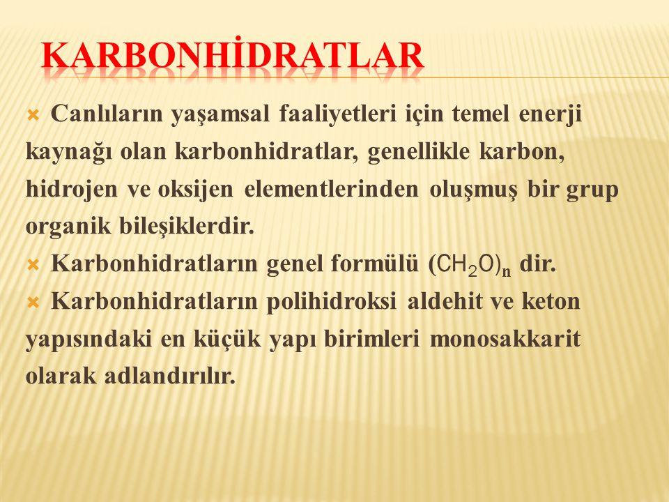 Karbonhİdratlar Canlıların yaşamsal faaliyetleri için temel enerji