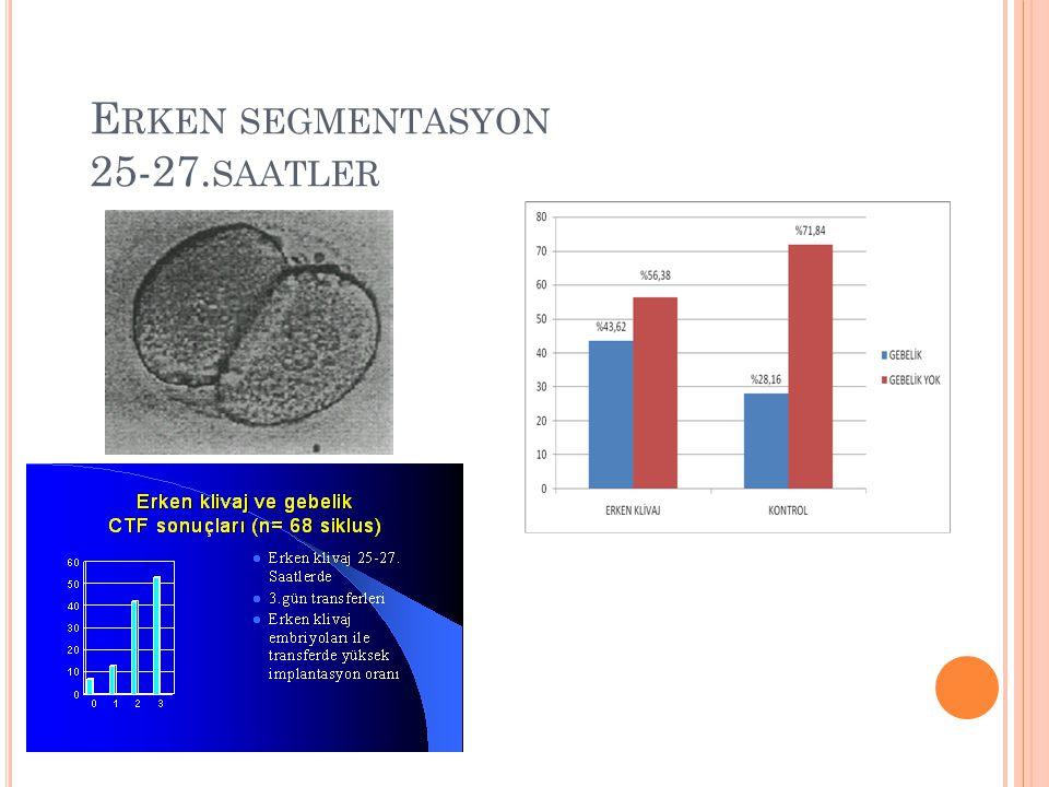 Erken segmentasyon 25-27.saatler