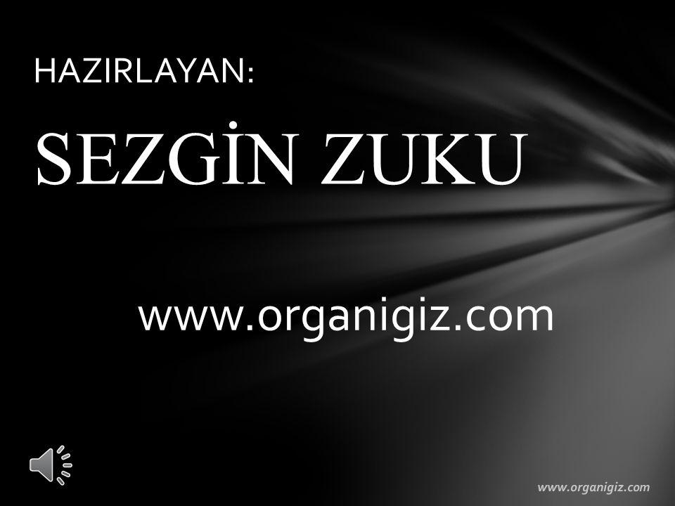 HAZIRLAYAN: SEZGİN ZUKU www.organigiz.com www.organigiz.com