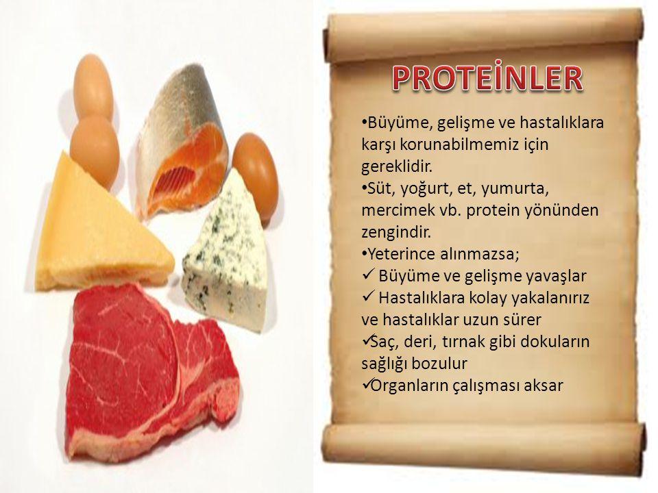 PROTEİNLER Büyüme, gelişme ve hastalıklara karşı korunabilmemiz için gereklidir. Süt, yoğurt, et, yumurta, mercimek vb. protein yönünden zengindir.