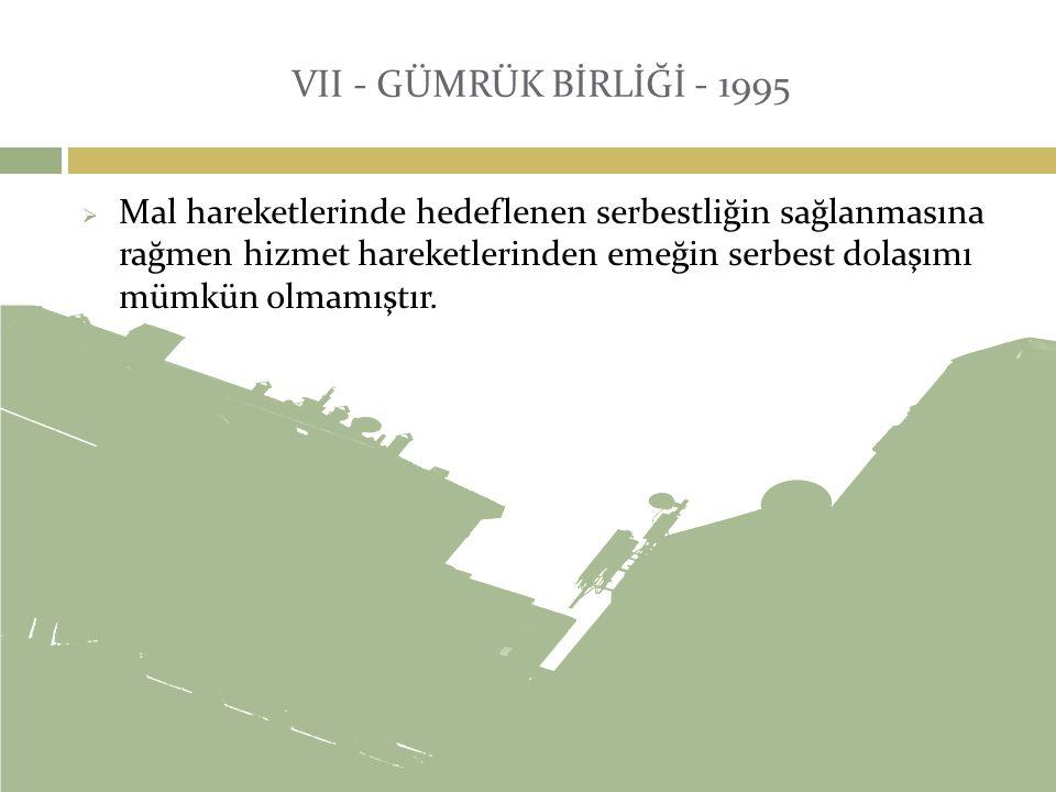VII - GÜMRÜK BİRLİĞİ - 1995