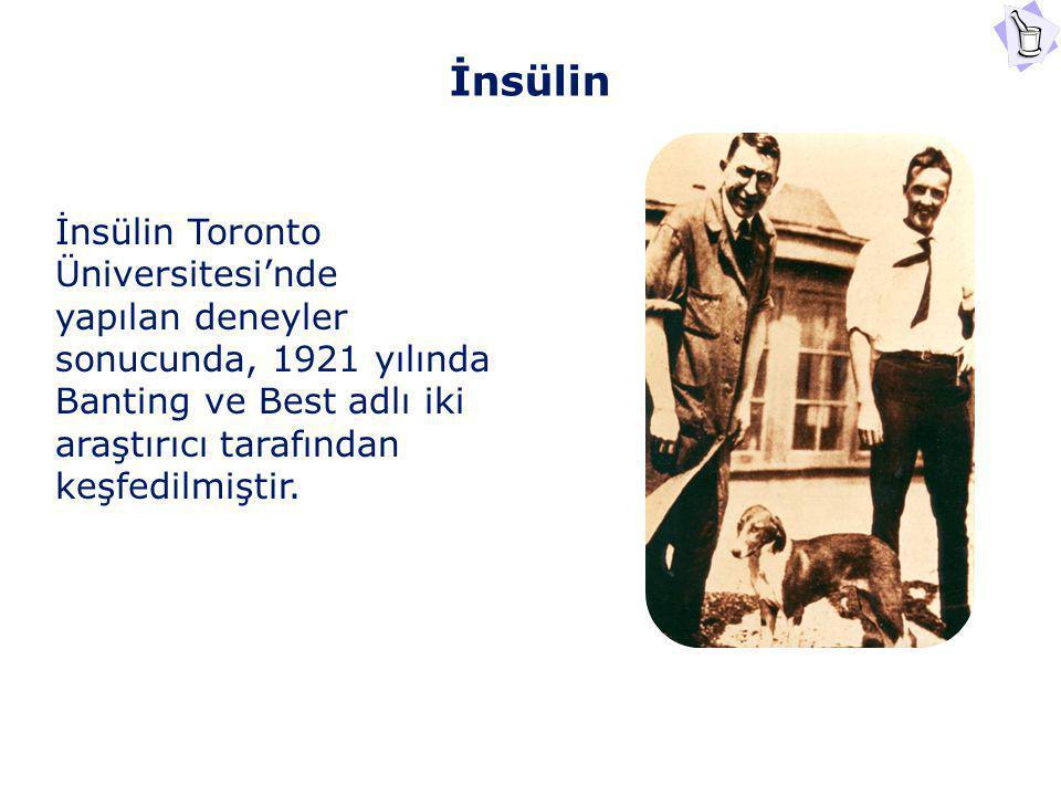 İnsülin İnsülin Toronto Üniversitesi'nde yapılan deneyler sonucunda, 1921 yılında Banting ve Best adlı iki araştırıcı tarafından keşfedilmiştir.