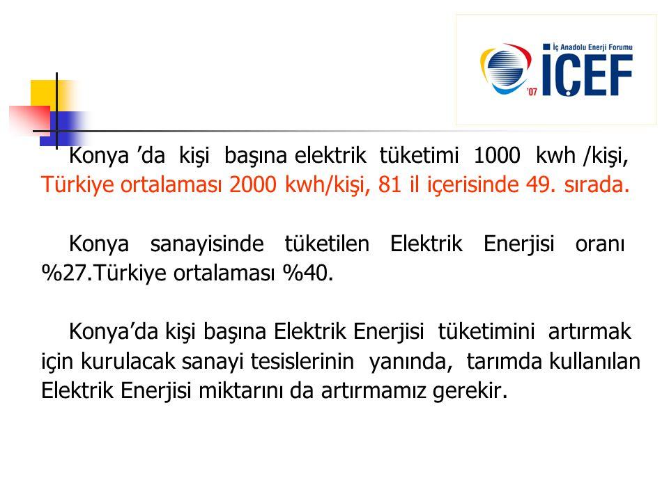 Konya 'da kişi başına elektrik tüketimi 1000 kwh /kişi,
