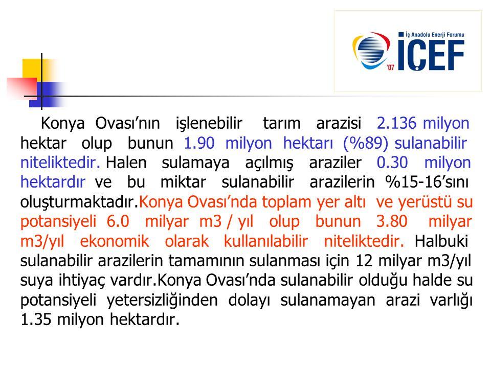 Konya Ovası'nın işlenebilir tarım arazisi 2.136 milyon
